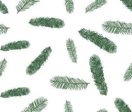 Seamless pattern of spruce, hand drawn botanical print.