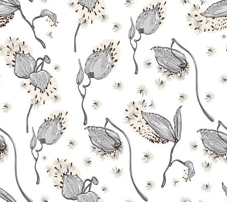 Seamless pattern Vector floral design with asclepias syriaca on white background Illustration