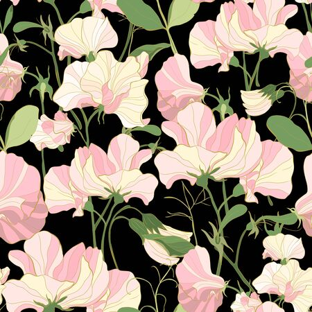 Pretty floral pattern with flowers of sweet peas. Black background. The motif of spring flowers bouquet. Elegant the template for fabric, paper, postcard.  イラスト・ベクター素材