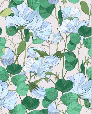 Pretty floral pattern with flowers of sweet peas. Pink background. Flowers, leaves, pods, and tendrils pastel-colored. Elegant the template for fabric, paper, postcard.  イラスト・ベクター素材