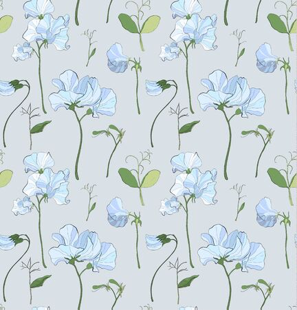 Pretty floral pattern with flowers of sweet peas. Grey background. Flowers, leaves, pods, and tendrils pastel-colored. Elegant the template for fabric, paper, postcard.