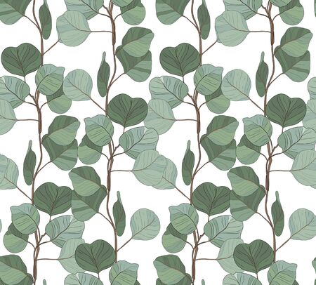 Eucalyptus silver dollar tree foliage natural branches seamless pattern. Vector decorative cute elegant greenery illustration isolated white background