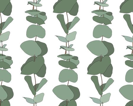 Eucalyptus baby blue, foliage natural branches with green leaves seeds tropical seamless pattern. Vector decorative beautiful elegant illustration white background  イラスト・ベクター素材