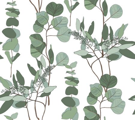 Eucalyptus seeded, silver dollar, baby blue tree leaves art designer, foliage, elements of natural branches in rustic style seamless pattern. Vector nature decorative various elegant illustration for