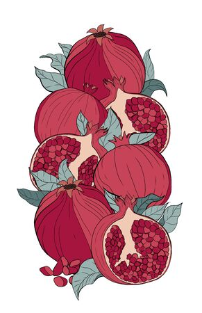 Vector composition of pomegranate with leaves on a white isolated background. Design for cosmetics, spa, pomegranate juice, health care products, perfume.