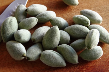 Green Almonds Stock Photo - 19241309