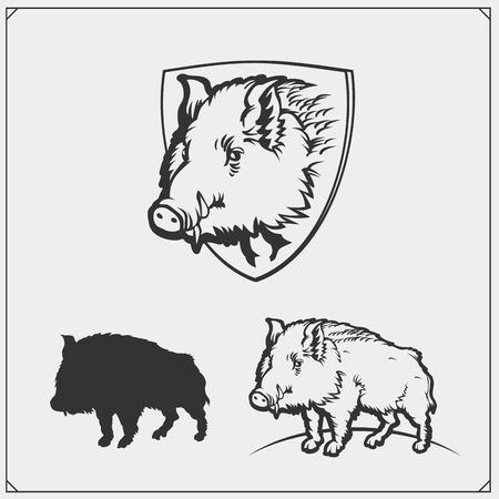illustratie van een wild zwijn. Stock Illustratie
