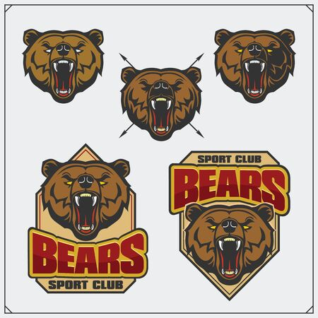 Labels, emblems and design elements for sport club with bear head.