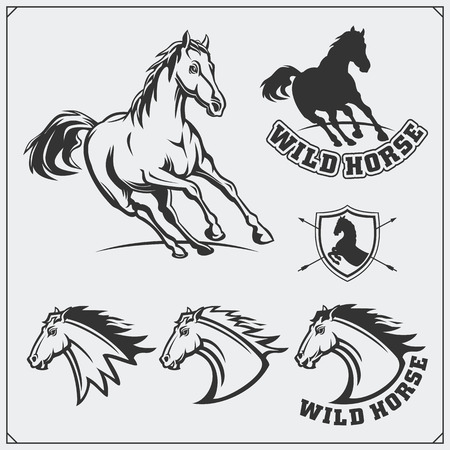 Horse heraldry coat of arms. Labels, emblems and design elements for sport club. Ilustrace