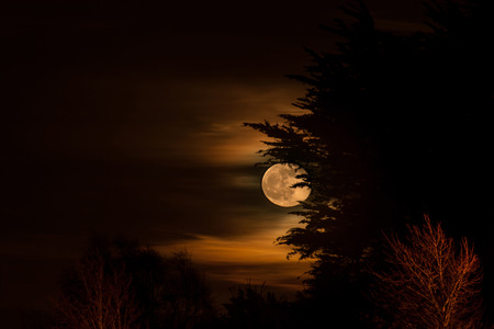 moonbeam: playing hide and seek with the moon Stock Photo