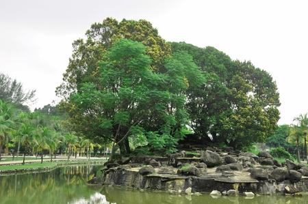 titiwangsa: recreation park in Titiwangsa Lake Garden located in Kuala Lumpur Malaysia
