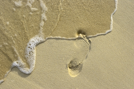 Right footstep on the coral sandy beach Stock Photo