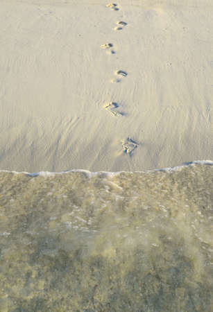 Fun footsteps on a coral sandy beach photo