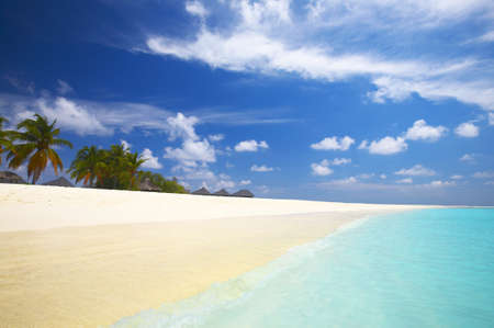 Coral tropical beach on the island Kuredu in the Indian Ocean, Maldives