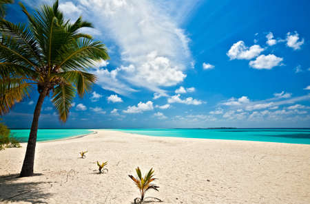 Infinity tropical beach on the island Kuredu in the Indian Ocean, Maldives Stock Photo