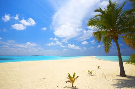 bahamas: Infinity tropisch strand op het eiland Kuredu in de Indische Oceaan, Malediven Stockfoto