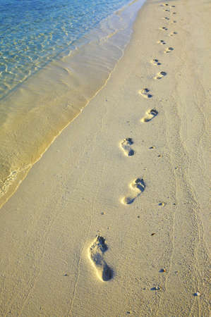 Lonely footprints on sandy beach Stock Photo