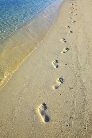 Lonely footprints on sandy beach Stock Photo