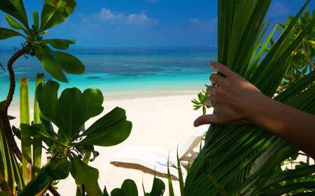Paradise beach on an ocean island