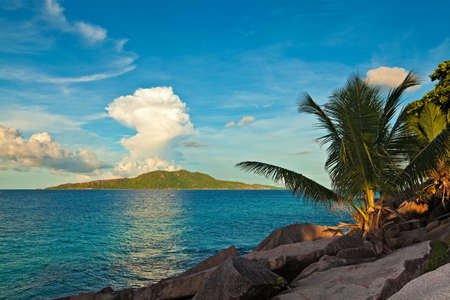 ladigue: Excellent sunset view with a big stones and palmtree, Seychelles, La Digue island
