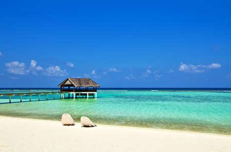 Coral tropical beach, The Indian Ocean, Maldives photo