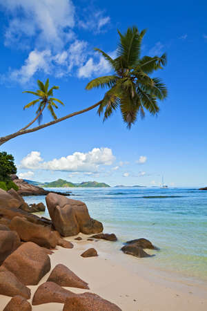 ladigue: Dream seascape view with a big stones and palmtree, Seychelles, La Digue island