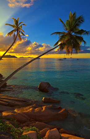 Excellent sunset view with a big stones and palmtrees, Seychelles, La Digue island Stock Photo - 13148521