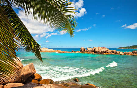 Excellent seascape view with a big stones and palmtree, Seychelles, La Digue island photo
