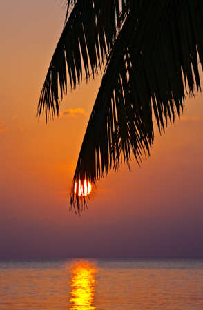 Nice Sunset in The Indian Ocean, Maldives Stock Photo - 16508772