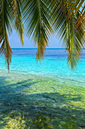 Tropical seascape on the island Vilamendhoo in the Indian Ocean, Maldives Stock Photo - 16659285