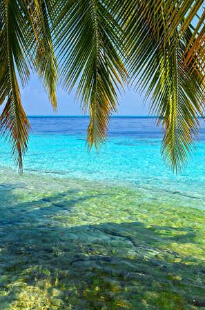 vilamendhoo: Tropical seascape on the island Vilamendhoo in the Indian Ocean, Maldives
