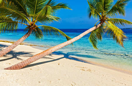 Tropical beach on the island Vilamendhoo in the Indian Ocean, Maldives Stock Photo - 16894922