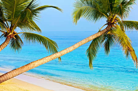 Tropical beach on the island Vilamendhoo in the Indian Ocean, Maldives Stock Photo