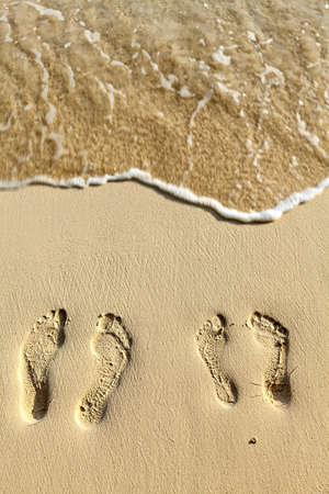 Two pairs footsteps on the coral sandy beach Stock Photo