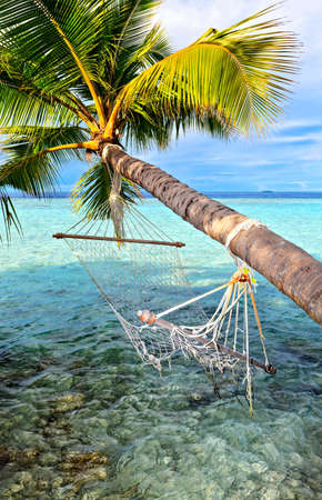 Old hammock, attached to a palm tree on a  beach in The Indian Ocean, Maldives photo