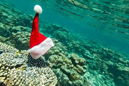Christmas hat is underwater (he did exist) Stock fotó