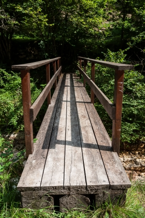 Wood bridge in a forest Stock Photo