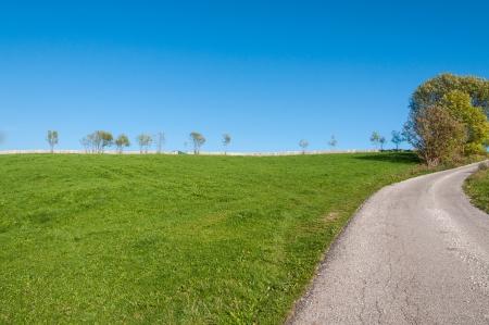 A road in the lawn Reklamní fotografie