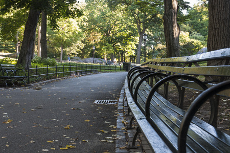 Benches in Central Park, Manhattan New York City Stock Photo