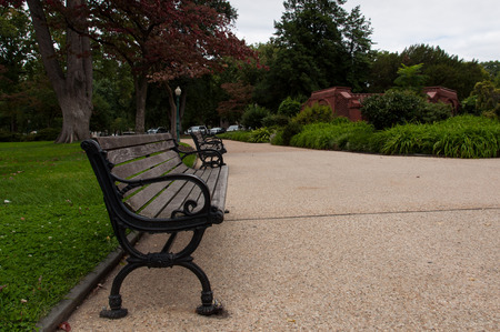 Empty bench in the park Stock Photo