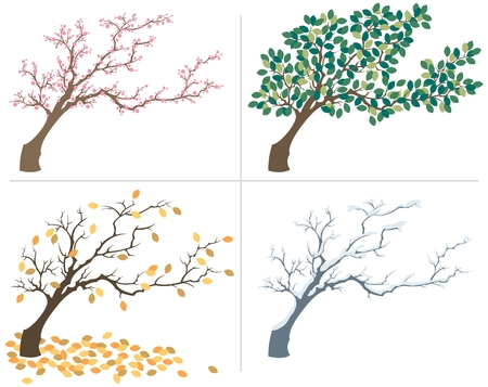 A tree, shown during the four seasons. No transparency and gradients used in the vector file.
