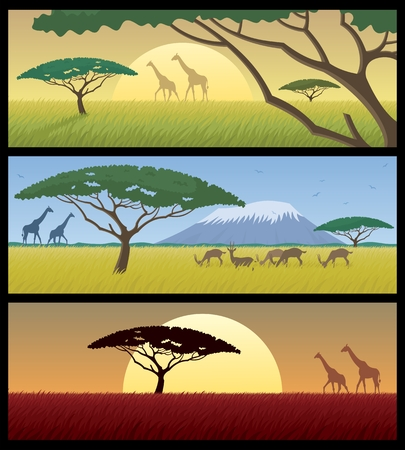 Three African landscapes. Good for using as banners. No transparency used. Basic (linear) gradients used for the skies. Stock Vector - 6683453