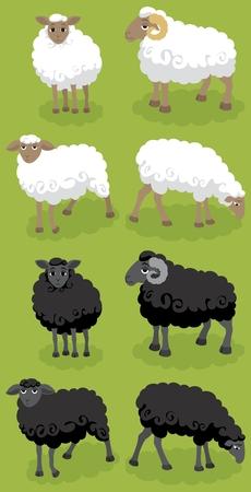 lamb: Bianco e nero fumetto pecore. � possibile organizzare il proprio gregge con loro. :)  Vettoriali