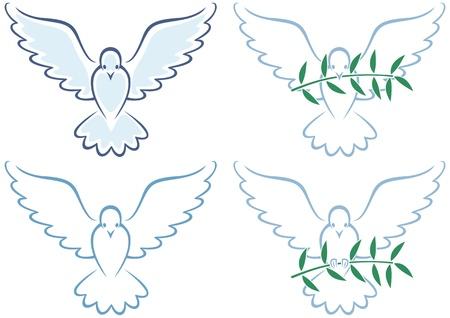 paloma: Ilustraci�n de arte de l�nea blanca Paloma en 4 versiones. No hay transparencia y degradados utilizados.  Vectores