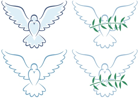 Line art illustration of white dove in 4 versions. No transparency and gradients used.  Vector