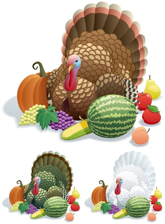 Thanksgiving turkey in 3 versions. No transparency used. Basic (linear) gradients.   Vector