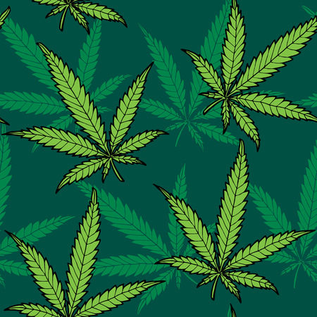 cannabis sativa: Seamless hand drawn hemp pattern  No transparency and gradients used