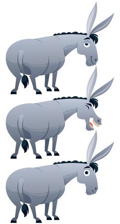 burro: Burro de dibujos animados sobre fondo blanco en 3 versiones. Vectores
