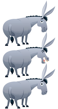 livestock: Cartoon donkey over white background in 3 versions.