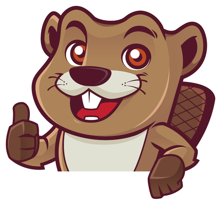 Cartoon mascot of beaver giving you thumb up while standing behind white sign or sheet of paper.